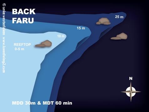 BACK-FARU
