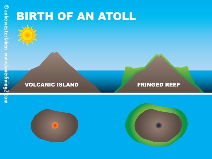 BIRTH_OF_ATOLL_01