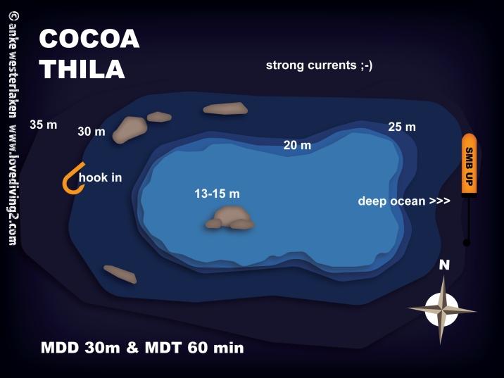 COCOA-THILA