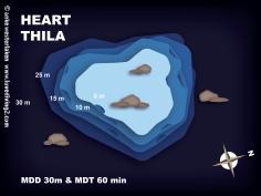 HEART-THILA