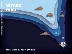 MIYARU-FARU
