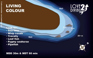 LIVING COLOUR raja ampat dive map